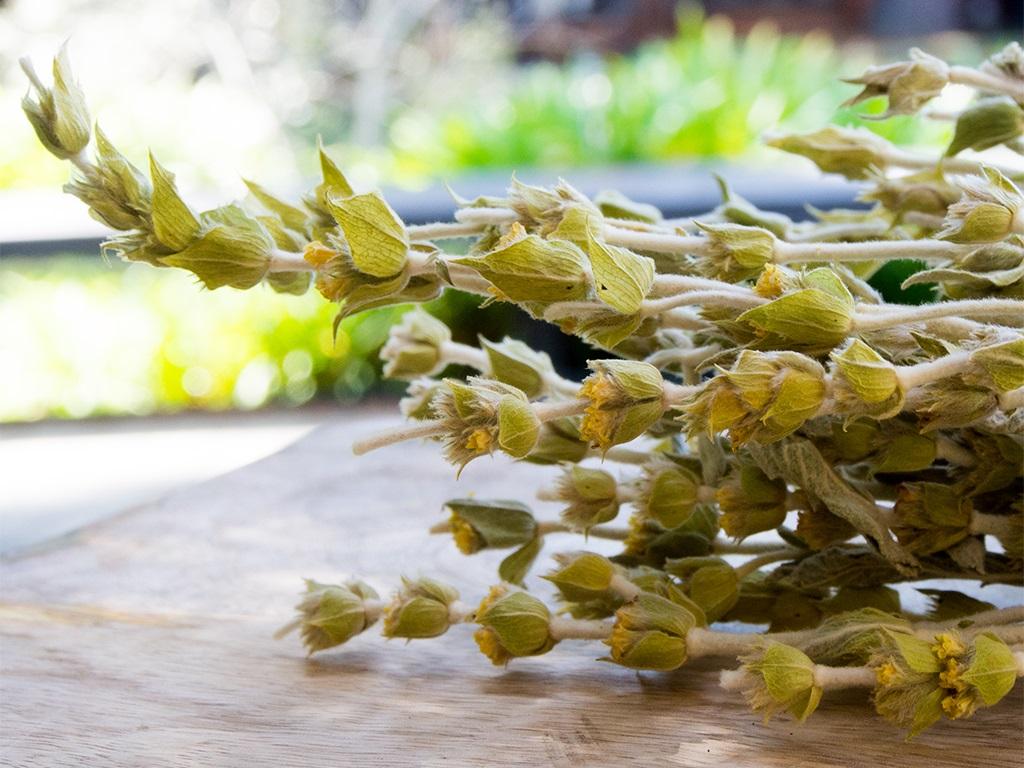 чай ту вуну, цай ту вуну, τσάι του βουνού, лечебные свойства