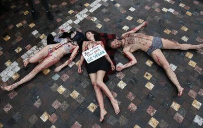 По следам Femen: Веганы-активисты обнажились на площади Монастираки