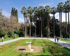 Парки и сады в Афинах
