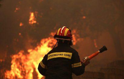 Трагедия в Греции: 77 человека погибли от пожаров. Среди них множество детей. Фото и видео.